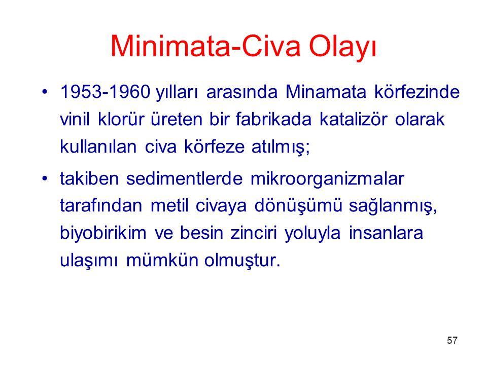 Minimata-Civa Olayı