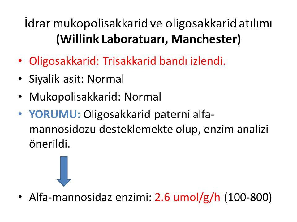 İdrar mukopolisakkarid ve oligosakkarid atılımı (Willink Laboratuarı, Manchester)