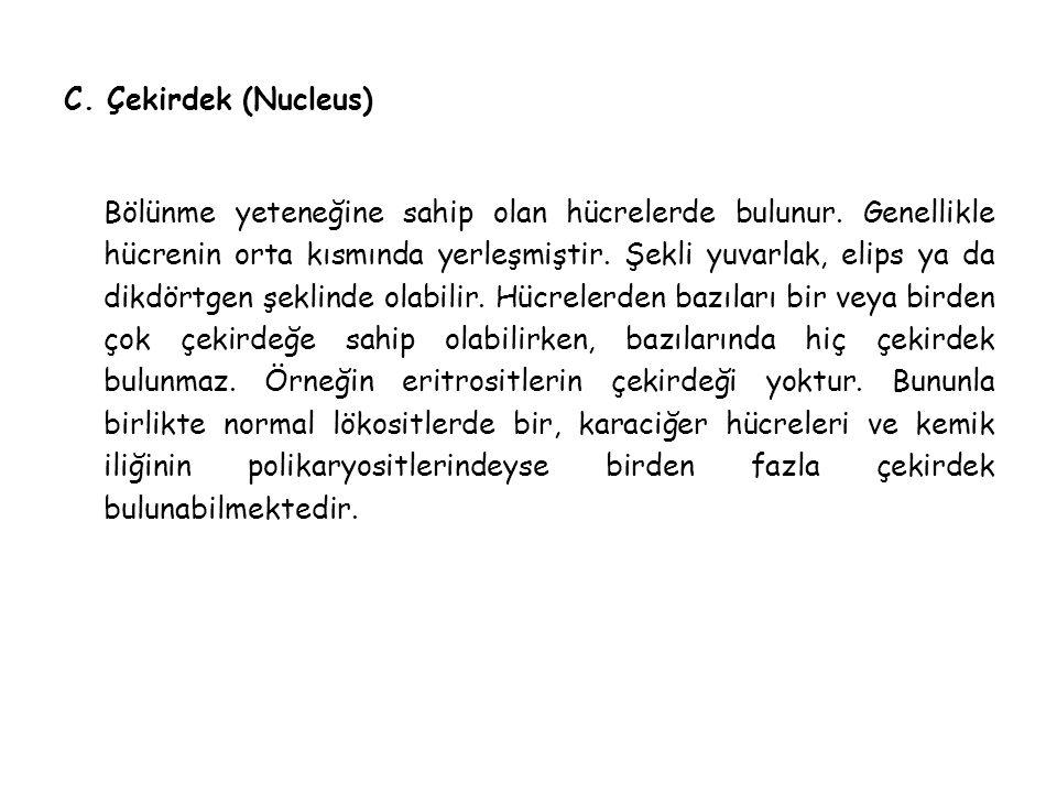 C. Çekirdek (Nucleus)