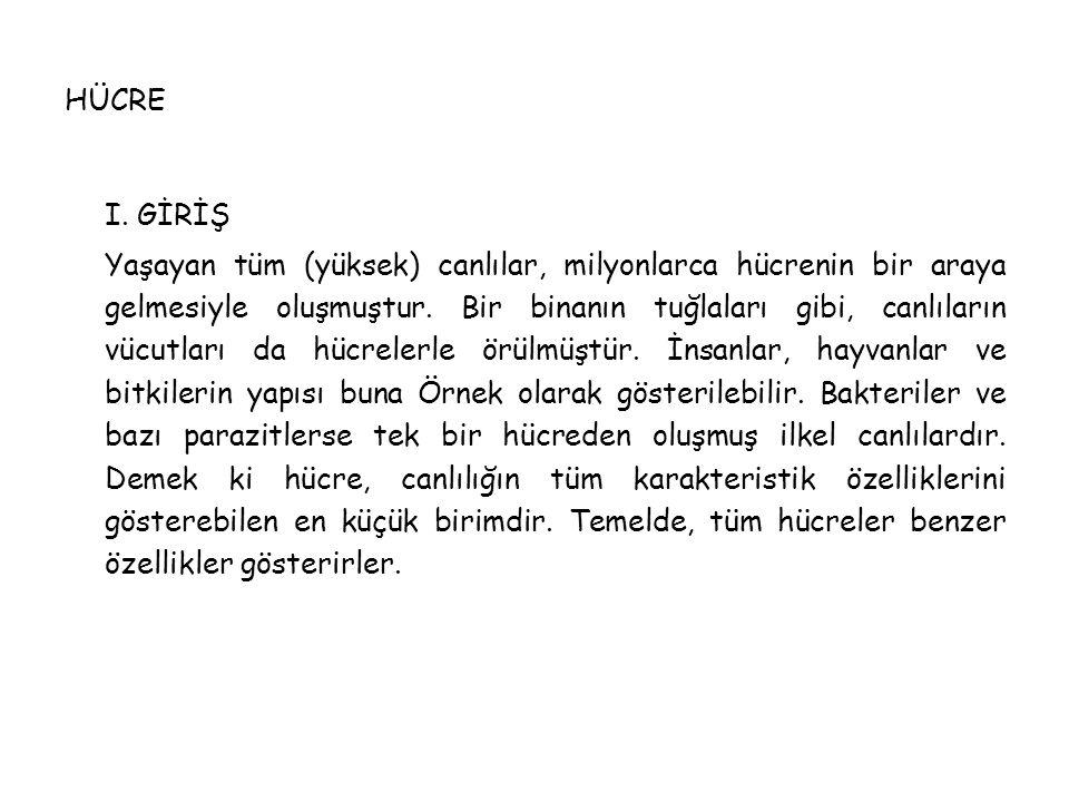 HÜCRE I. GİRİŞ.