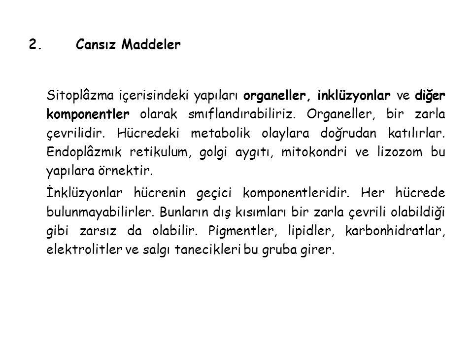 2. Cansız Maddeler
