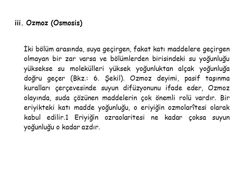 iii. Ozmoz (Osmosis)