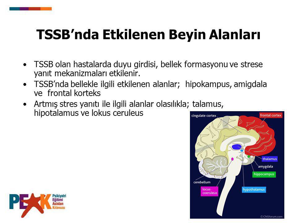 TSSB'nda Etkilenen Beyin Alanları