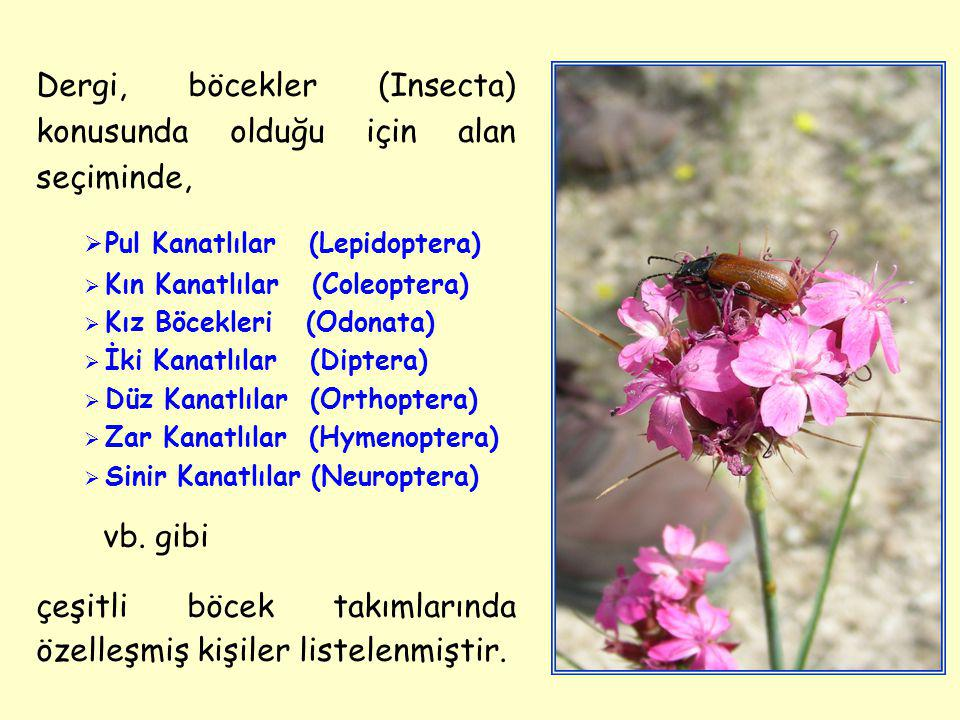Dergi, böcekler (Insecta) konusunda olduğu için alan seçiminde,