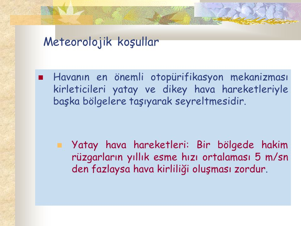 Meteorolojik koşullar