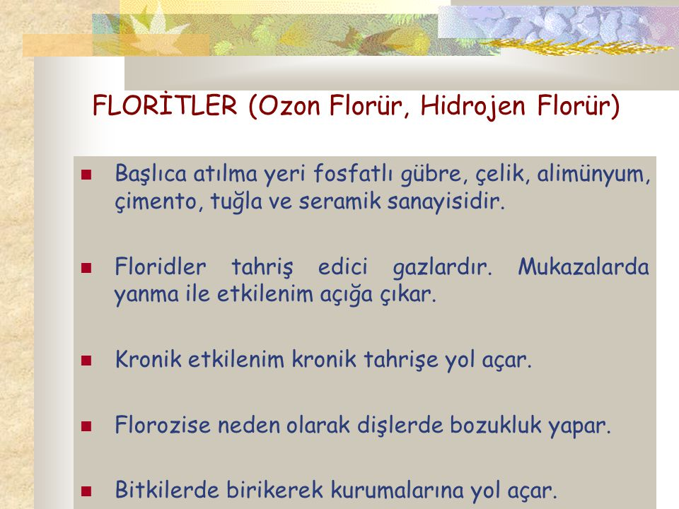 FLORİTLER (Ozon Florür, Hidrojen Florür)