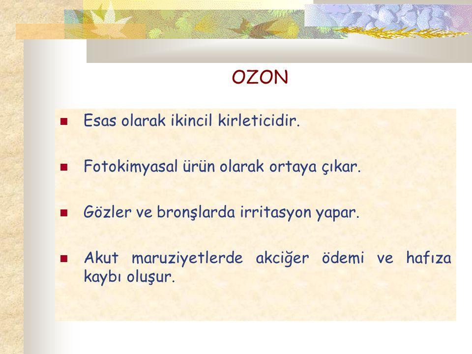 OZON Esas olarak ikincil kirleticidir.