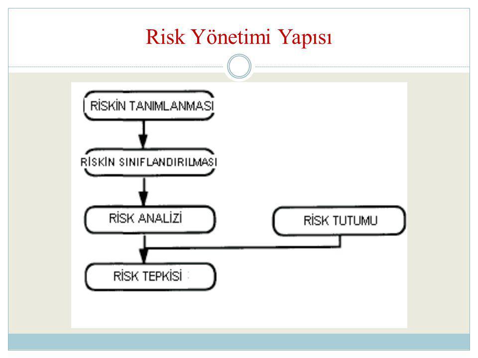 Risk Yönetimi Yapısı