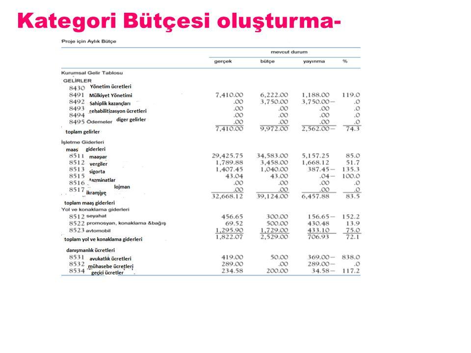 Kategori Bütçesi oluşturma-