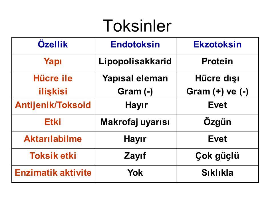 Toksinler Özellik Endotoksin Ekzotoksin Yapı Lipopolisakkarid Protein