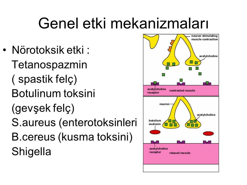 Genel etki mekanizmaları