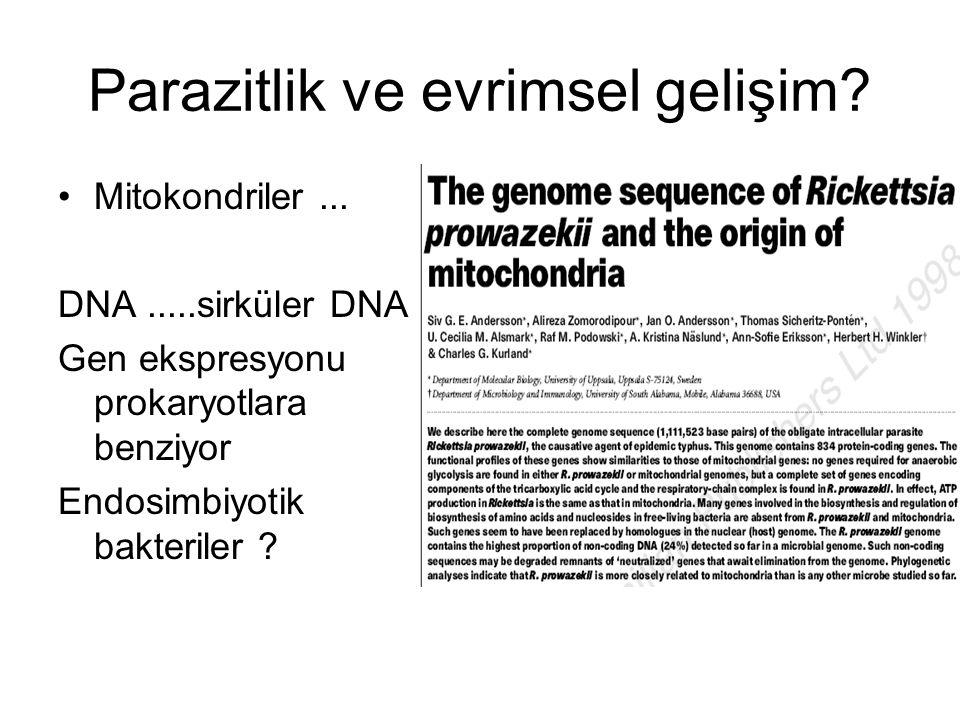 Parazitlik ve evrimsel gelişim