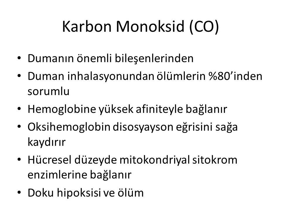 Karbon Monoksid (CO) Dumanın önemli bileşenlerinden