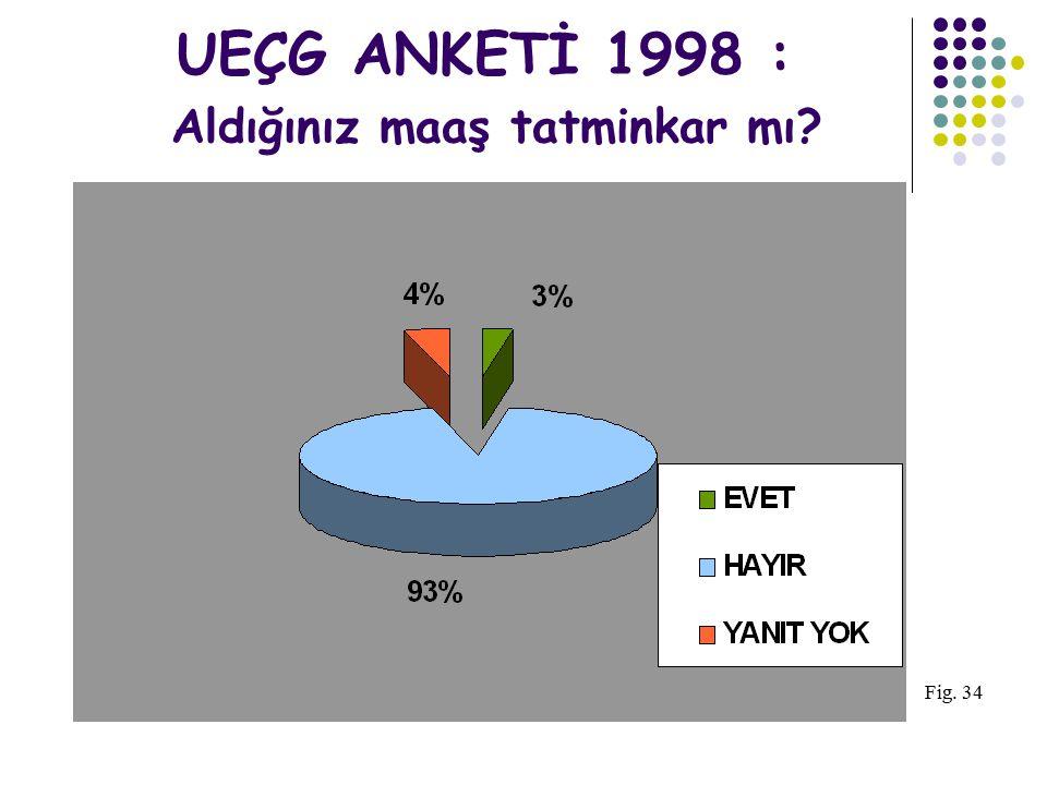 UEÇG ANKETİ 1998 : Aldığınız maaş tatminkar mı