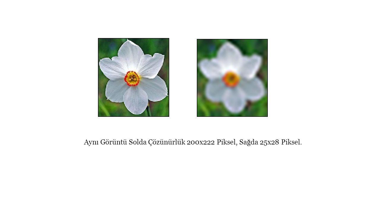 Aynı Görüntü Solda Çözünürlük 200x222 Piksel, Sağda 25x28 Piksel.