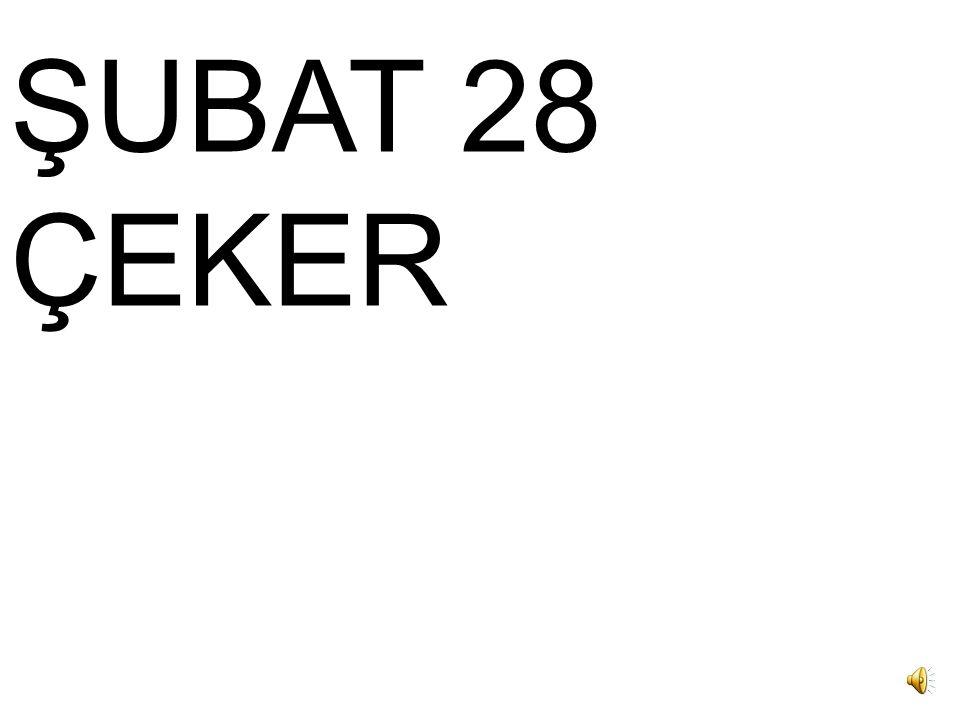 ŞUBAT 28 ÇEKER