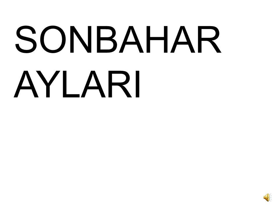 SONBAHAR AYLARI
