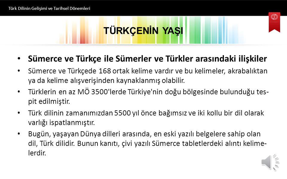 Sümerce ve Türkçe ile Sümerler ve Türkler arasındaki ilişkiler