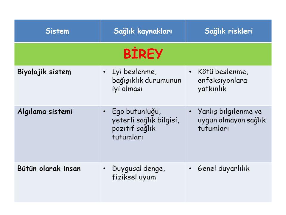 BİREY Sistem Sağlık kaynakları Sağlık riskleri Biyolojik sistem