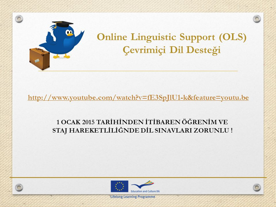 Online Linguistic Support (OLS)
