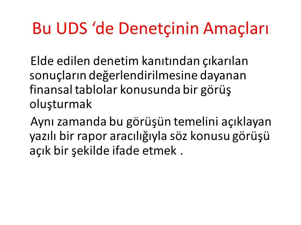 Bu UDS 'de Denetçinin Amaçları