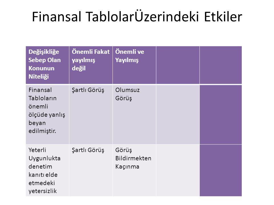 Finansal TablolarÜzerindeki Etkiler