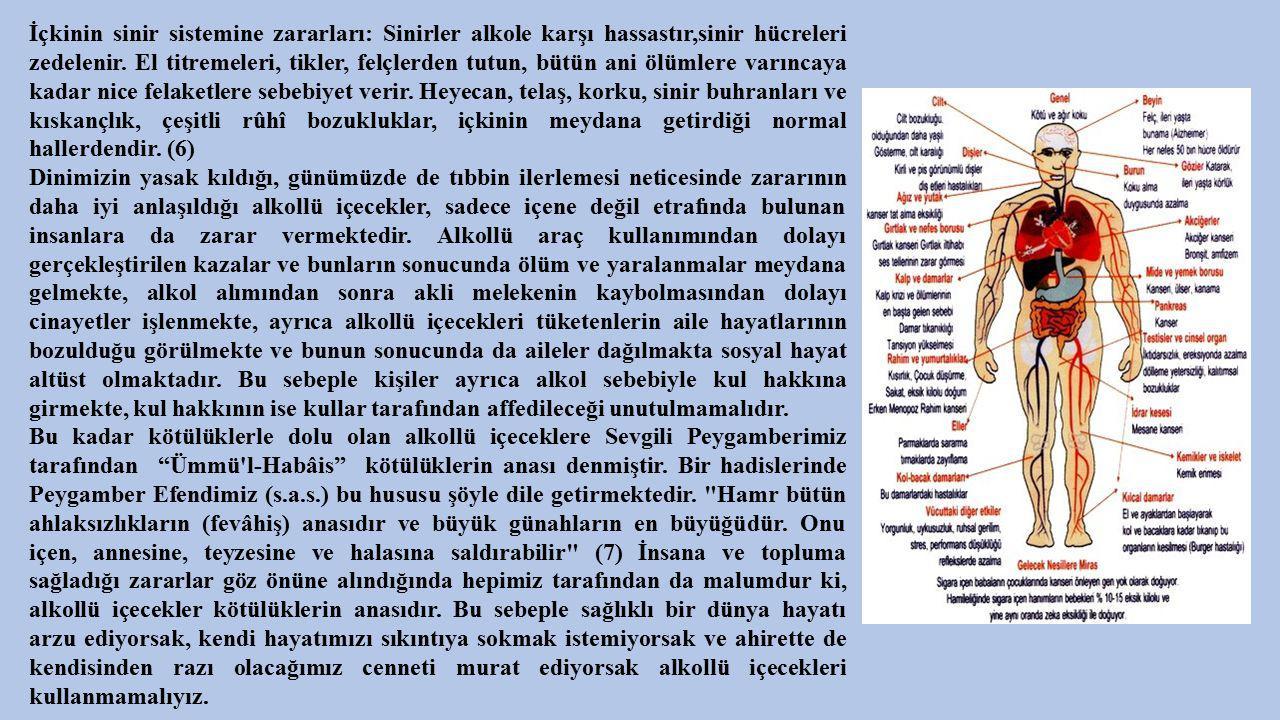 İçkinin sinir sistemine zararları: Sinirler alkole karşı hassastır,sinir hücreleri zedelenir. El titremeleri, tikler, felçlerden tutun, bütün ani ölümlere varıncaya kadar nice felaketlere sebebiyet verir. Heyecan, telaş, korku, sinir buhranları ve kıskançlık, çeşitli rûhî bozukluklar, içkinin meydana getirdiği normal hallerdendir. (6)