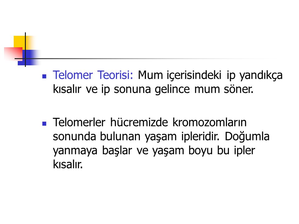 Telomer Teorisi: Mum içerisindeki ip yandıkça kısalır ve ip sonuna gelince mum söner.