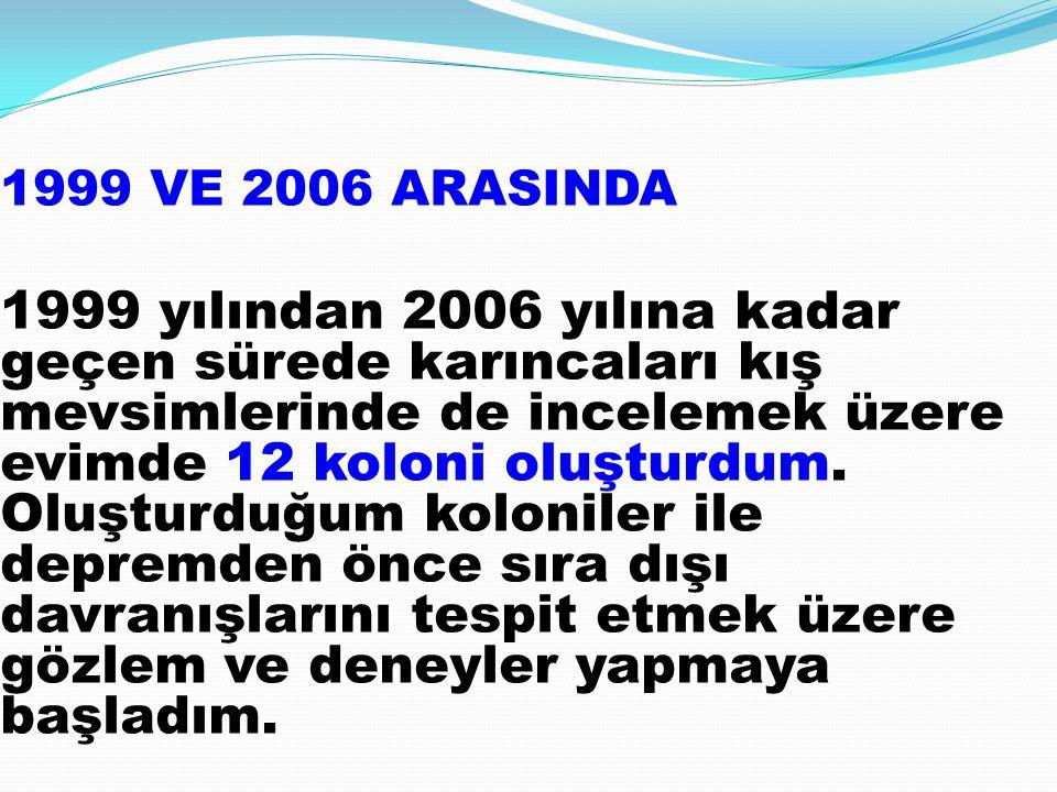 1999 VE 2006 ARASINDA