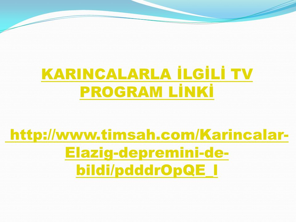 KARINCALARLA İLGİLİ TV PROGRAM LİNKİ
