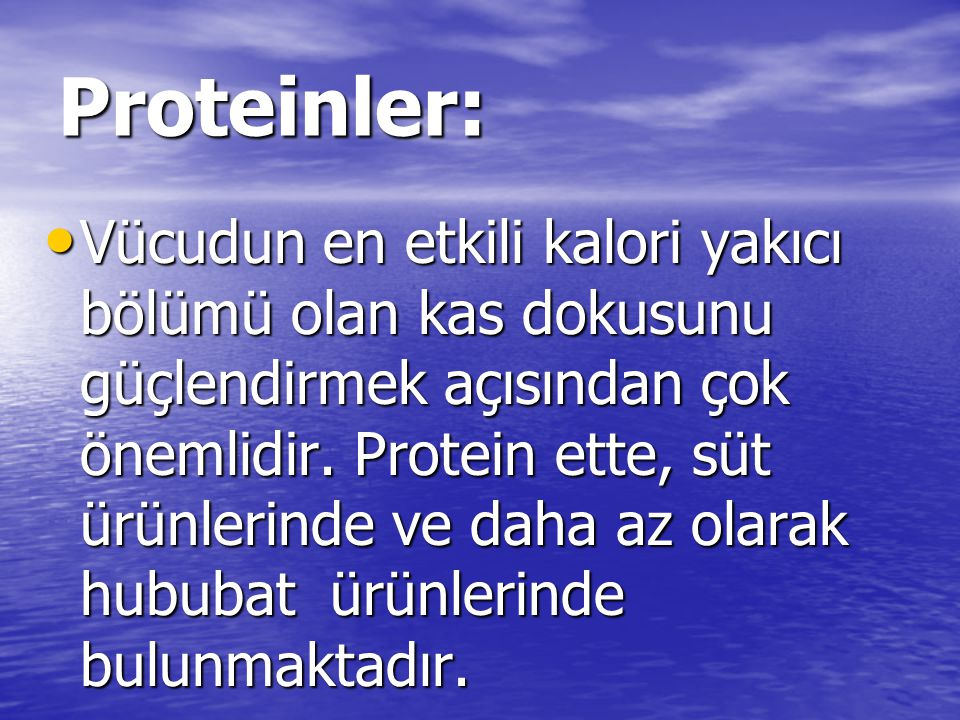 Proteinler: