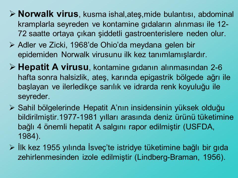 Norwalk virus, kusma ishal,ateş,mide bulantısı, abdominal kramplarla seyreden ve kontamine gıdaların alınması ile 12-72 saatte ortaya çıkan şiddetli gastroenterislere neden olur.