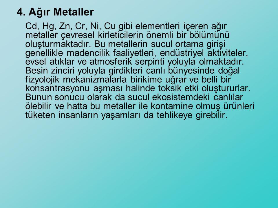 4. Ağır Metaller