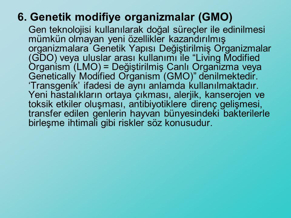 6. Genetik modifiye organizmalar (GMO)