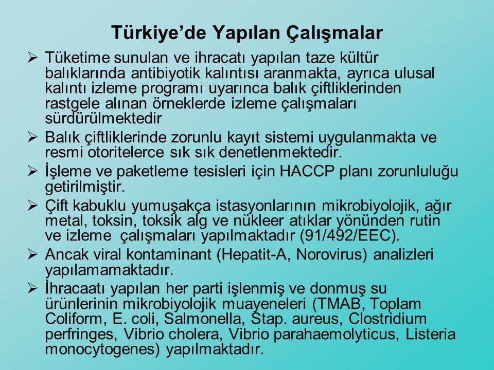 Türkiye'de Yapılan Çalışmalar