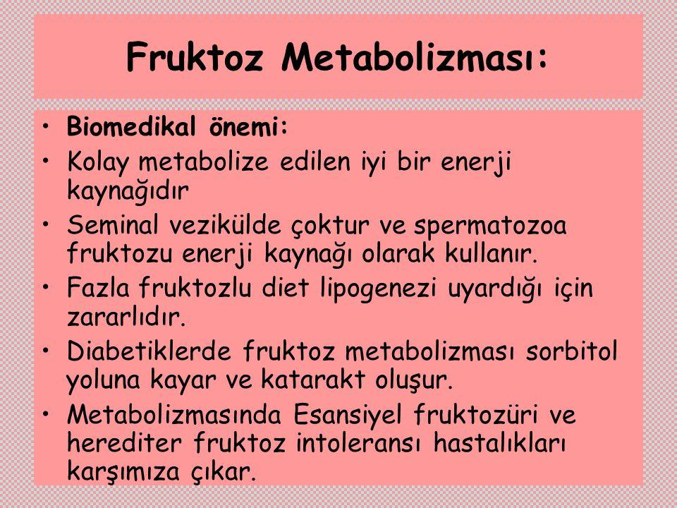 Fruktoz Metabolizması: