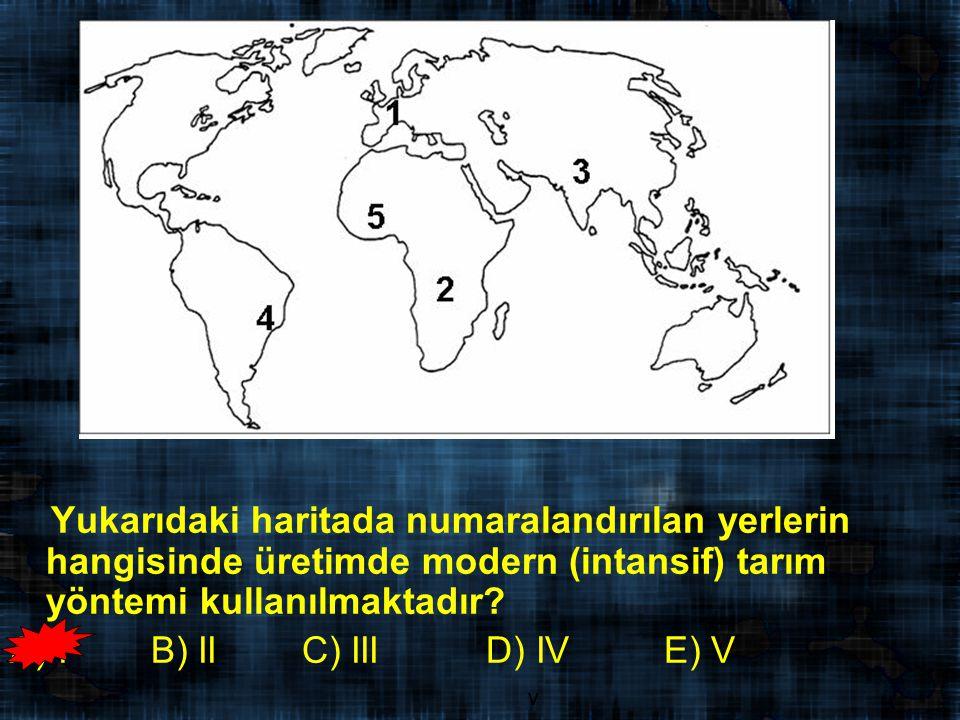 Yukarıdaki haritada numaralandırılan yerlerin hangisinde üretimde modern (intansif) tarım yöntemi kullanılmaktadır