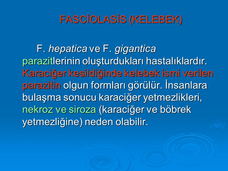FASCİOLASİS (KELEBEK)