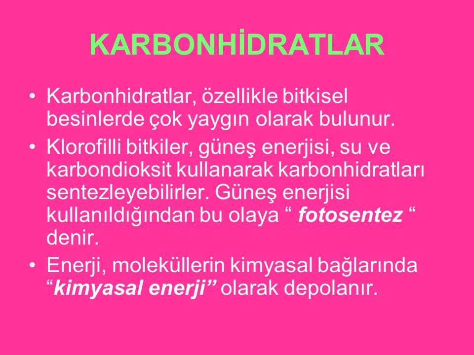 KARBONHİDRATLAR Karbonhidratlar, özellikle bitkisel besinlerde çok yaygın olarak bulunur.