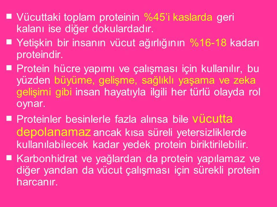 Vücuttaki toplam proteinin %45'i kaslarda geri kalanı ise diğer dokulardadır.