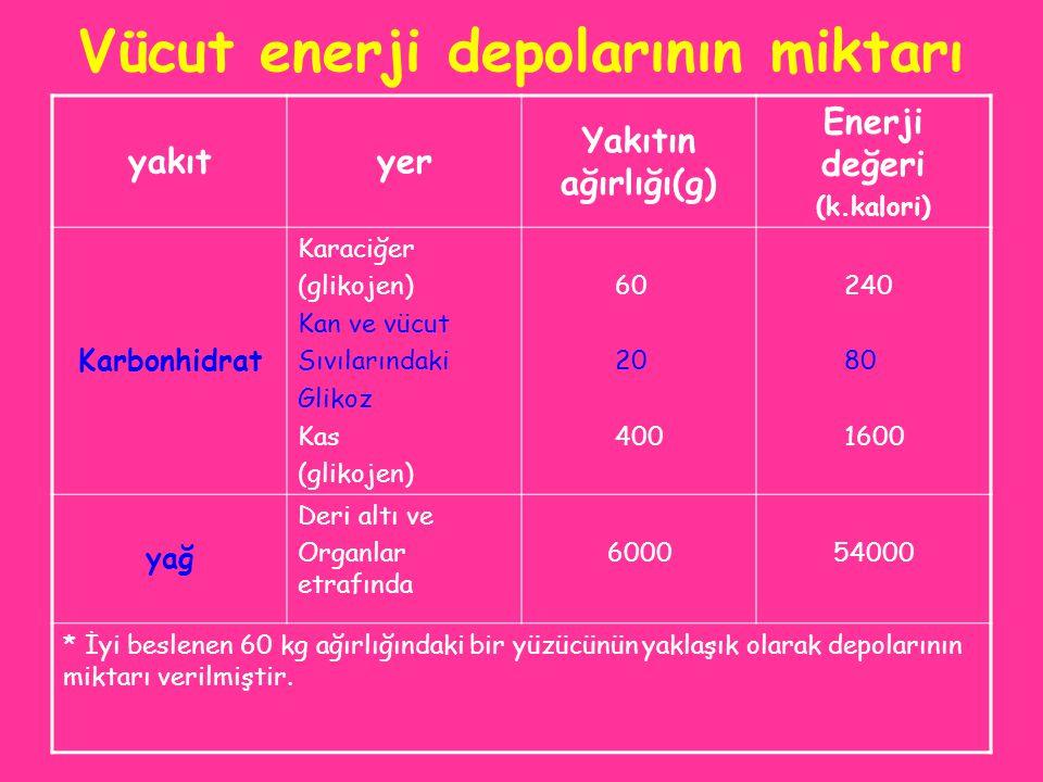 Vücut enerji depolarının miktarı