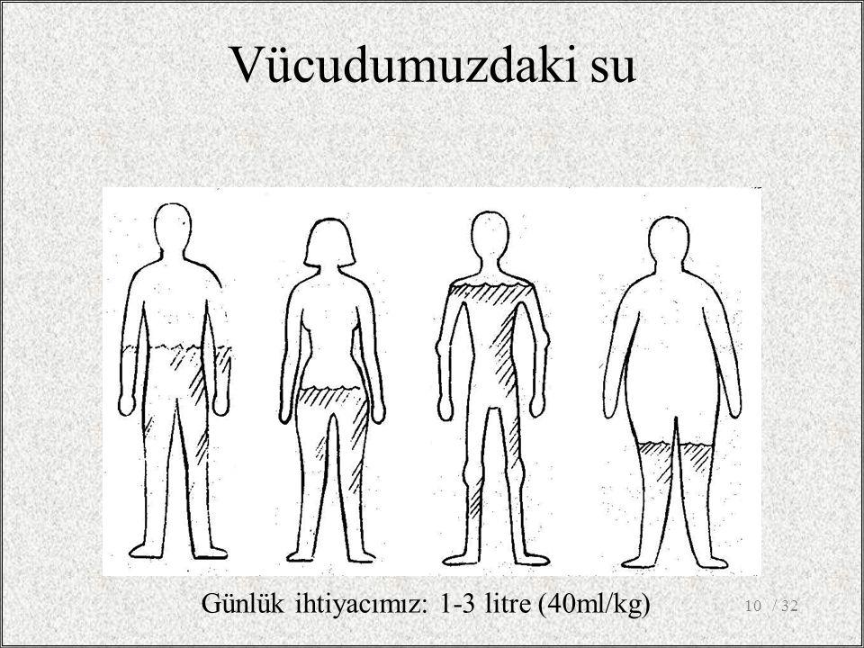 Vücudumuzdaki su Günlük ihtiyacımız: 1-3 litre (40ml/kg) / 32