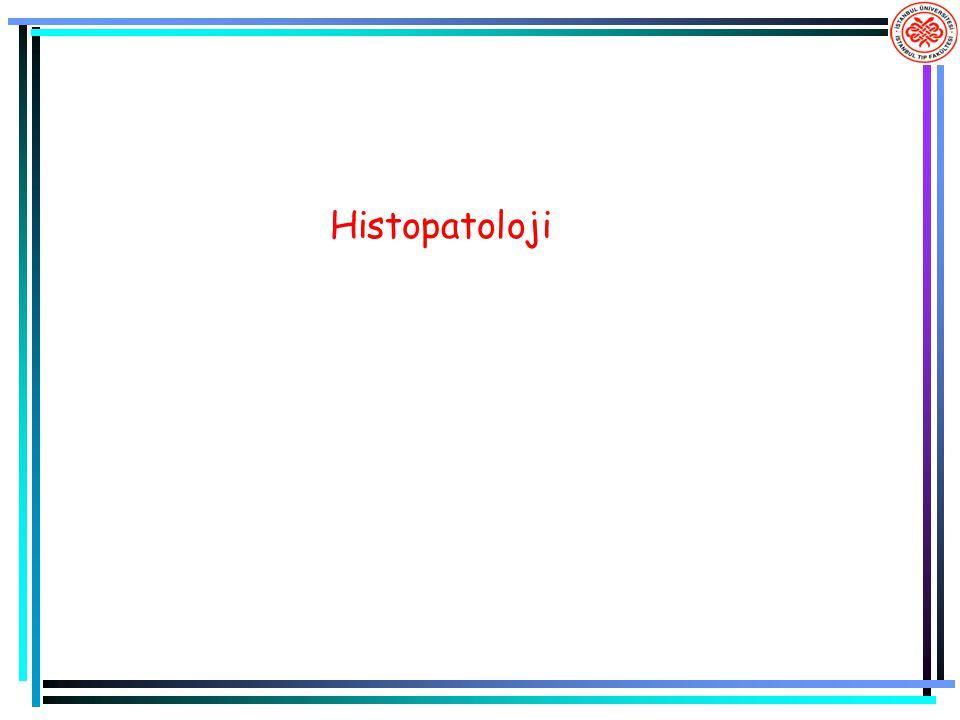 Histopatoloji