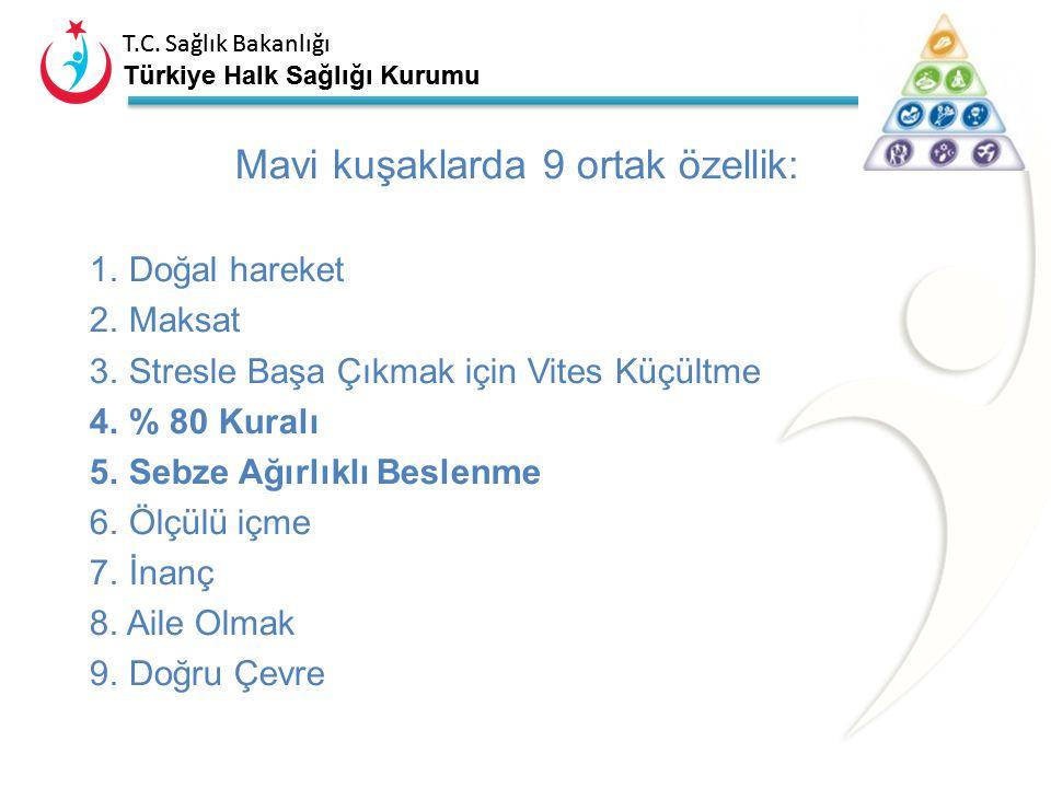 Mavi kuşaklarda 9 ortak özellik: