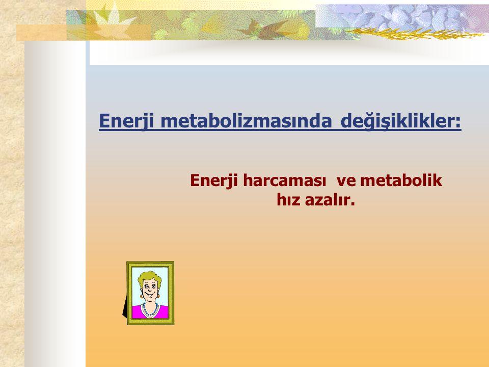 Enerji harcaması ve metabolik hız azalır.