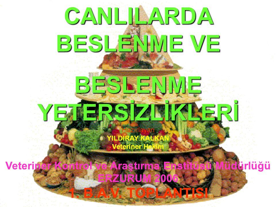 CANLILARDA BESLENME VE