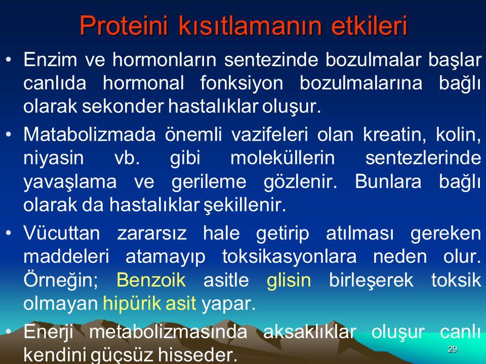 Proteini kısıtlamanın etkileri