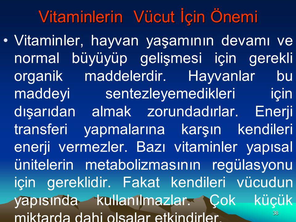 Vitaminlerin Vücut İçin Önemi