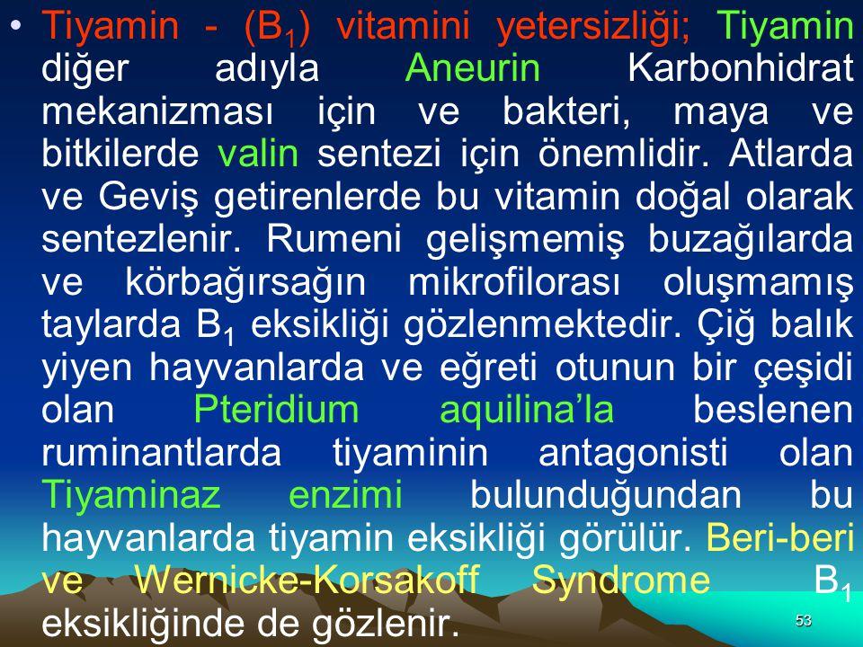 Tiyamin - (B1) vitamini yetersizliği; Tiyamin diğer adıyla Aneurin Karbonhidrat mekanizması için ve bakteri, maya ve bitkilerde valin sentezi için önemlidir.