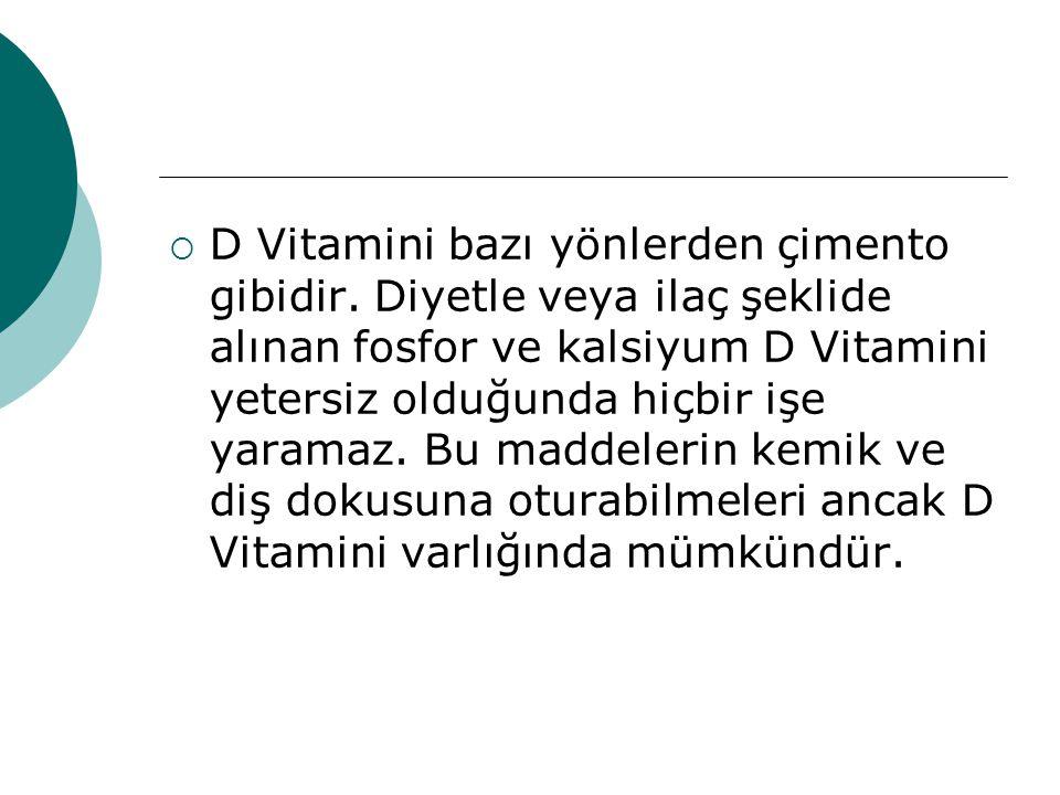 D Vitamini bazı yönlerden çimento gibidir